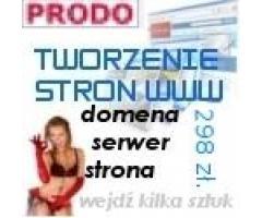 Wykonanie strony internetowej www tanio cena 298 zł. (brutto) !