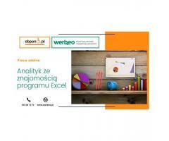 Analityk ze znajomością programu Excel – praca zdalna
