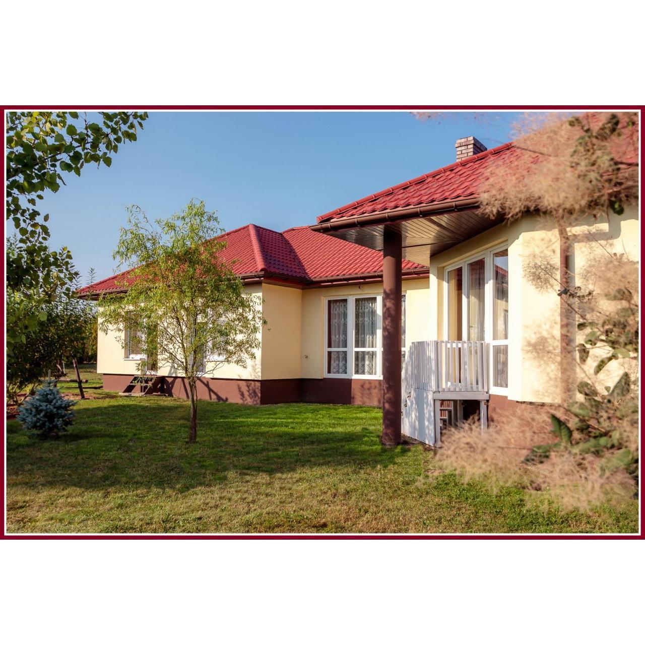 Atrakcyjna posiadłość koło Krzepic 1.5ha zagospodarowana